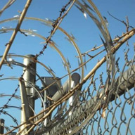 Razor Tape Wire Exporters in Oman